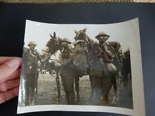 WW1 PHOTOGRAPH HORSE GAS MASK