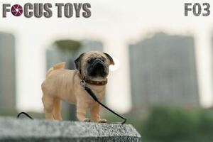 FOCUS TOYS F03 1/6 Soldier Pet Toy Dog Animal Model Pug Yellow Figure Toys Gifts