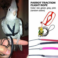 Pet Parrot Bird Harness and Leash Flying Straps Outdoor Training Traction Rope