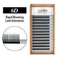Lashview 6D Rapid Blooming Volume Eyelash Extensions Fast Fan Individual Lashes
