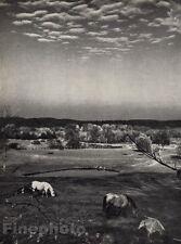 1959/72 Vintage 11x14 LANDSCAPE MOUNT KISCO New York Horses Art By ANDRE KERTESZ
