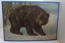 Old Schulwandtafel Wall Chart Bear Brown Bear Grizzly a. W