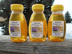 24 oz. Raw Clover Wildflower Honey from South Dakota... direct from beekeeper
