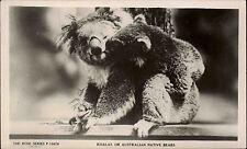 Australia Australien vintage postcard ~1950/60 Koalas Australian native bears