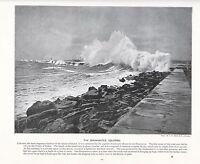 1897 Vittoriano Stampa ~ Colombo Harbour Ceylon Frangiflutti ~ Forti ( Testo