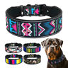 Adjustable Dog Collar Reflective Colourful Nylon Soft Padded for Pet Rottweiler