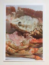 WOLFGANG TILLMANS, exhibition art card, Tate Modern gallery,  2017