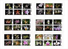 ORCHIDS PLANTS 11 SOUVENIR SHEETS MNH UNPERFORATED