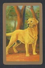 #850.094 modern swap card -MINT- Golden Retriever dog