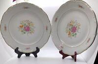 "Set of 2 Vintage Baum Brothers Meissen Flower Bouquet Dinner Plates 10 1/4"""
