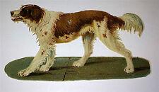 Antique Victorian Die Cut Pet Dog, Scrapbook Clipping C.1880's German Lithograph