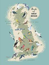 Oiseaux de Grande Bretagne Petite Plaque en Métal 200mm X 150mm ( Og )