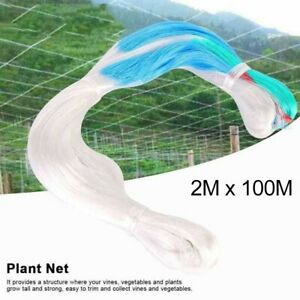 Garden Plant  Fruit Trellis Netting 2M X 100M,  Polythene Plant Support Netting