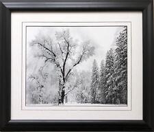 "Ansel Adams ""Oak Tree Snowstorm"" Custom Framed NEW ART print Photography 1948"