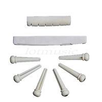 Genuine Bone Acoustic Bridge Pins Saddle Nut Pin Flok Parts Nut Saddle Pins Set