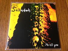 "Sebadoh It's All You 7"" Vinyl Record! non lp! UK IMPORT! lou barlow/dinosaur jr!"