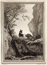 EAU FORTE / Fables de la Fontaine 1883 / LE LION DEVENU VIEUX