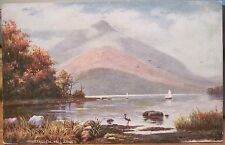 Irish Postcard INNISFALLEN Lakes of Killarney Ireland T Moore Tuck Oilette 7423