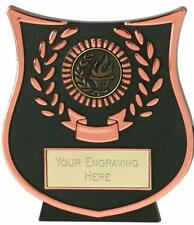Emblems-Gifts Curve Bronze Victory Torch Plaque (DB) Trophy With Free Engraving