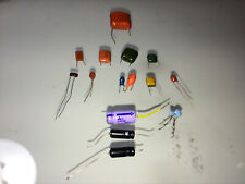 Mixed Value Capacitors (12 pack)