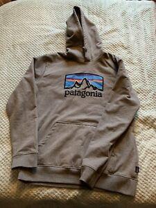 Mens Patagonia Hoodie Large