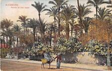 CPA EGYPTE ALEXANDRIE PALMIER DE SIDY GABER