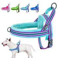 Cablaggio per cani Pettorina Riflettente Imbracatura Per Cani morbida Imbottito