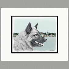 Norwegian Elkhound Dog Original Art Print 8x10 Matted to 11x14