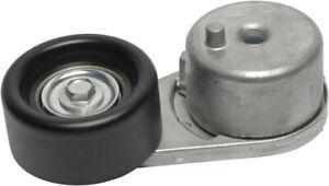 Belt Tensioner Assembly-Multi-V Continental Elite 49394