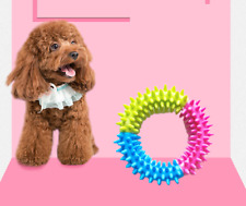 2PCS Puppy Pet Toys for Small Dogs Resistant To Bite Rubber Circle Dog Teething