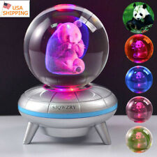 Night Light Panda animal Crystal ball 3D Home Decor LED Desk Table Lamp Gift US
