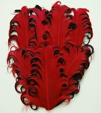 NAGORIE FEATHER PAD - RED/BLACK Curly Goose Pads; Craft/Art/Hats/Custome/Bridal