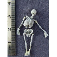 1/35th Miniature Skull Skeleton Figurine for Sand Table Scenery Building Toy