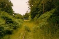 PHOTO  APPROACH TO PARKEND RAILWAY STATION IN 1994