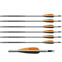 Easton Archery Platinum Plus Aluminium Arrows XX75 Aerograde Aluminium Set of 6