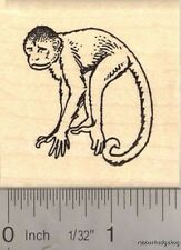 Capuchin Monkey Rubber Stamp  H13912 WM
