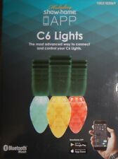 24 Holiday Show Home APP Lights - Multi-Function Color-Changing C6 LEDs