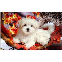 DIY 5D Diamond Painting Cute Dog Embroidery Cross Stitch Craft Home Decor J7W3