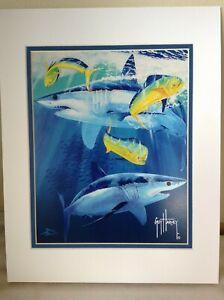 Guy Harvey Sharks and Bull Dolphins Mahi 11 x 14 Matted Print NWT