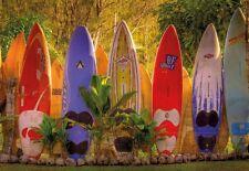 Fototapete 8-902 Maui 368 x 254 cm - keine Lieferkosten - 321meins