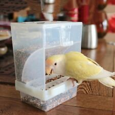 Bird Poultry Feeder Automatic Acrylic Food Container Parrot Pigeon Splash Proof