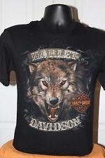 Harley-Davidson Men's Adventerous Trekkin  T-Shirt S/S Small