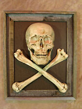 Framed Skull / Cross Bone 3D Picture, Halloween Prop Human Skulls/Skeleton, NEW
