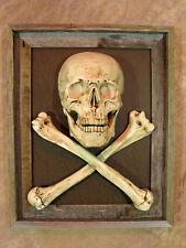 Framed Skull / Cross Bone 3D Picture, Halloween Prop Human Skulls/Skeleton, NEW