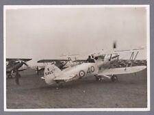 HAWKER HIND ORIGINAL VINTAGE PRESS PHOTO RAF - 4