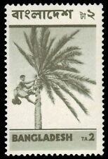 "BANGLADESH 53 (SG33) - Harvesting Date Palms ""1973 Printing"" (pa72460)"