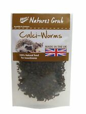 Dried Calci Worms 50g mammals reptiles birds and more nutritious treat & Calcium
