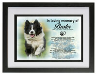 Border Collie dog/pet Personalised photo frame cremation urn keepsake for ashes