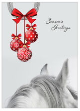 Equestrian Christmas Cards - Pack Of 10 - One Design