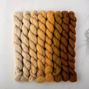 Appletons Crewel Wool Yarn – Honeysuckle Yellow 691 – 698 - 180m Full Hanks